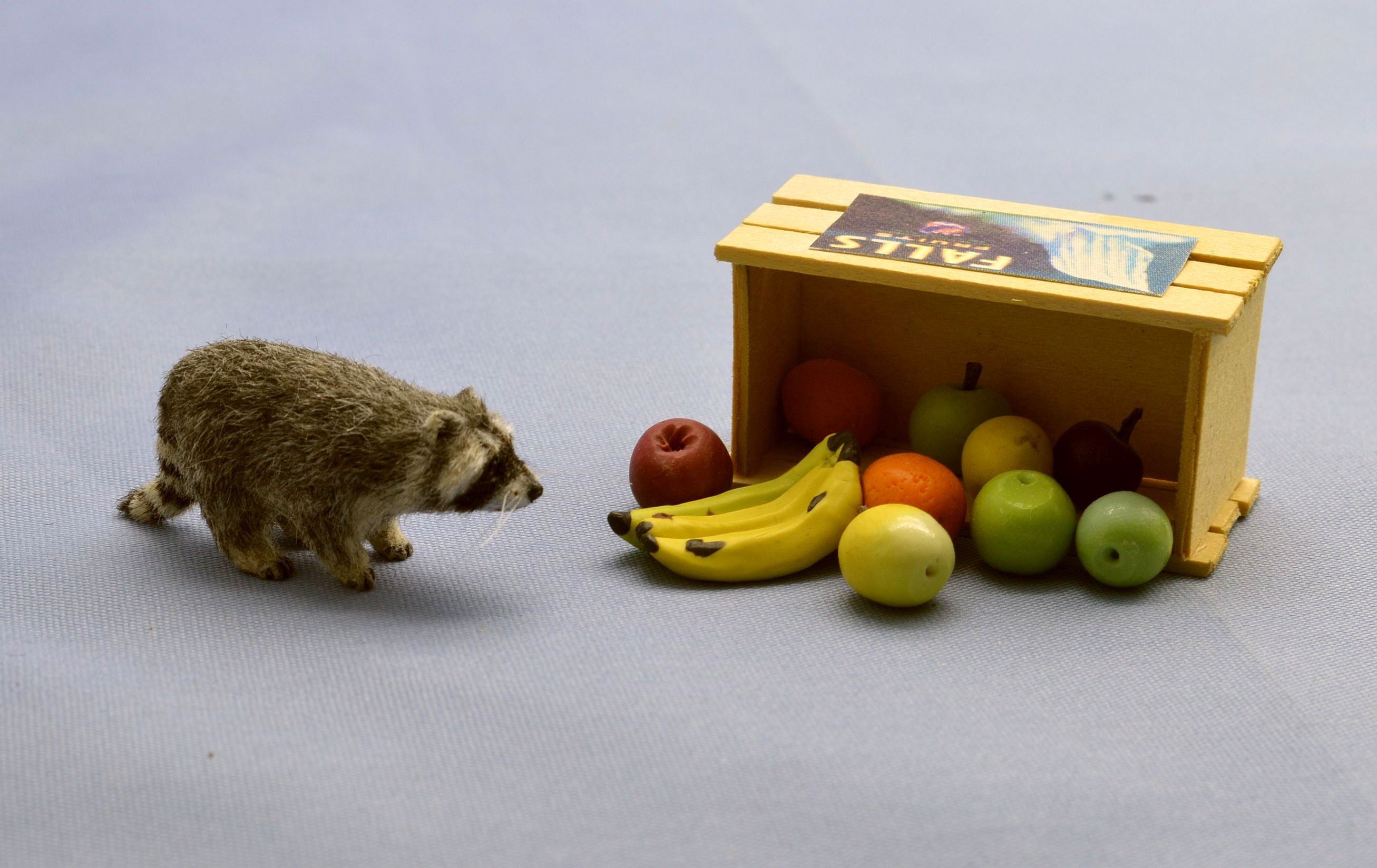 Hand  